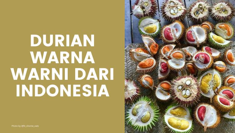Kenali Durian Warna Warni Asal Indonesia!